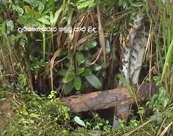 3 Mysterious Deaths in Gampaha (Watch video)
