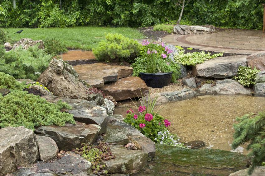 aquascape your landscape july 2011