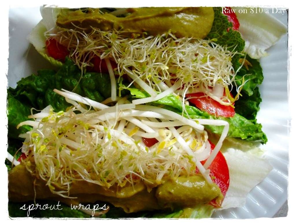 Download this Sprout Wraps Raw Food... picture