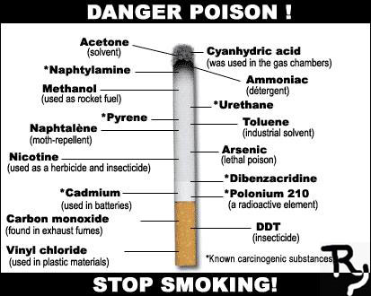 essay report danger of smoking The dangers of smoking in our current society, the free choice of smoking has gradually evolved into an alarming levels of addiction although smokers are warned on the dangers of smoking on the cigarette packs, they have repeatedly ignored this notion, and though avoidable, cigarette smoking has continued to cause deaths and.