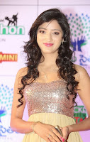Actress Richa Panai Latest  Pictures at Memu Saitam Dinner with Stars Red Carpet  1.jpg