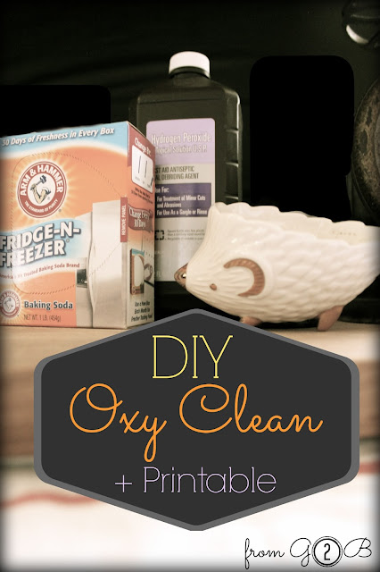 Oxyclean DIY Recipe
