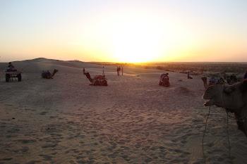 Thar Desert, Rajasthan (2011)