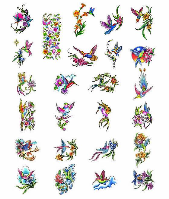 Tattoos Of Humming Bird Designs
