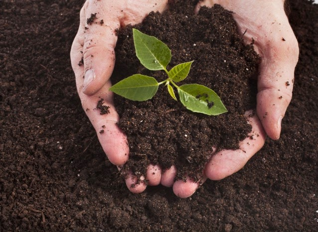 Environmental groups want to make soil a red hot climate change issue. (Credit: Shutterstock) Click to Enlarge.