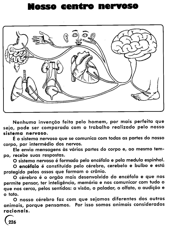Muito Exercicios de ciencias 7 serie sistema nervoso / King low loader  YU65