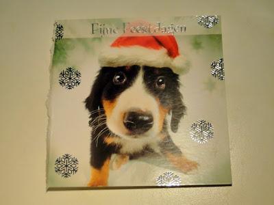 Kerstkaart met hond met kerstmuts.