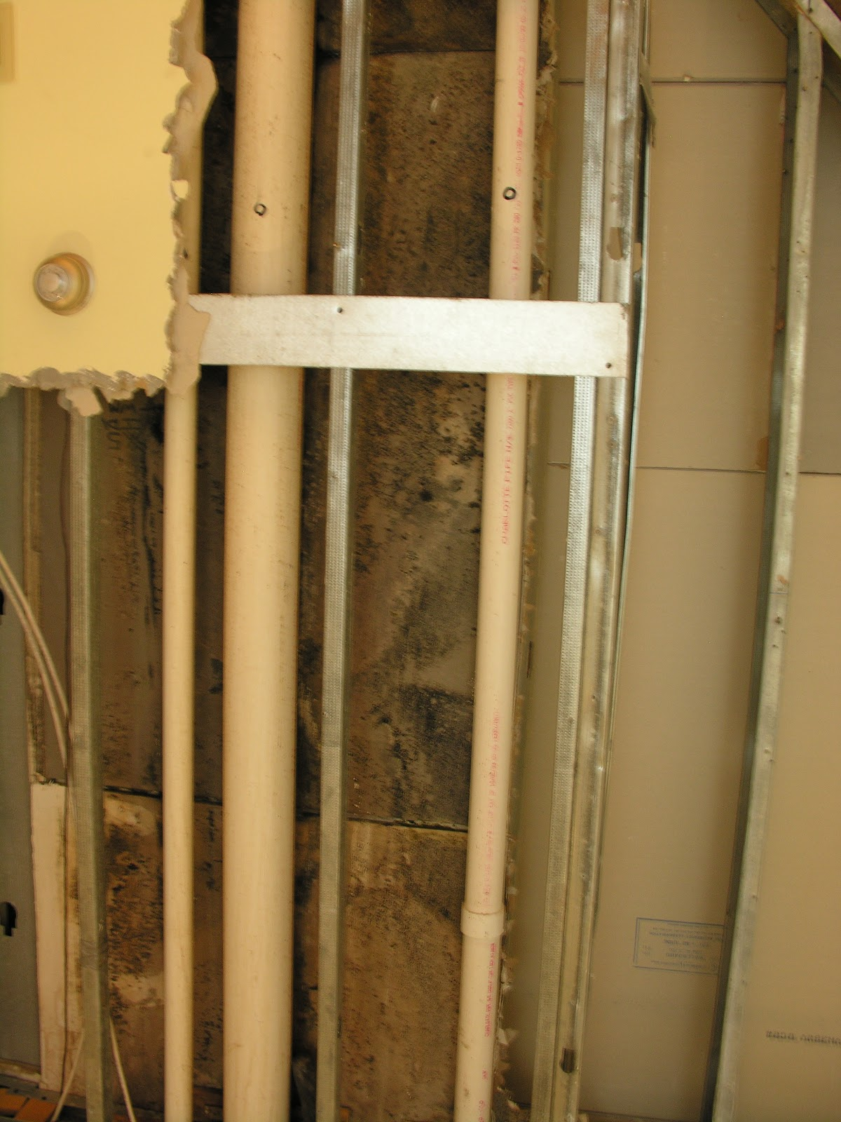 how to detect mold behind walls