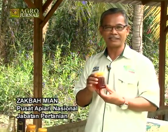 Dokumentari Madu Lebah Apis - Agrojurnal