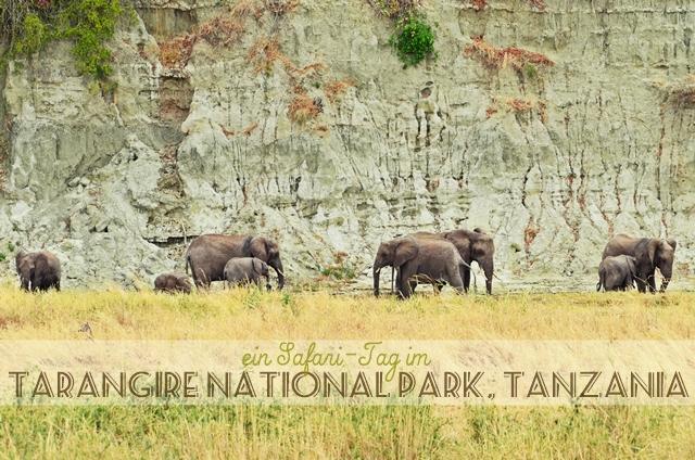 luzia pimpinella | travel | tansania - tanzania | safari @ tarangire nationalpark