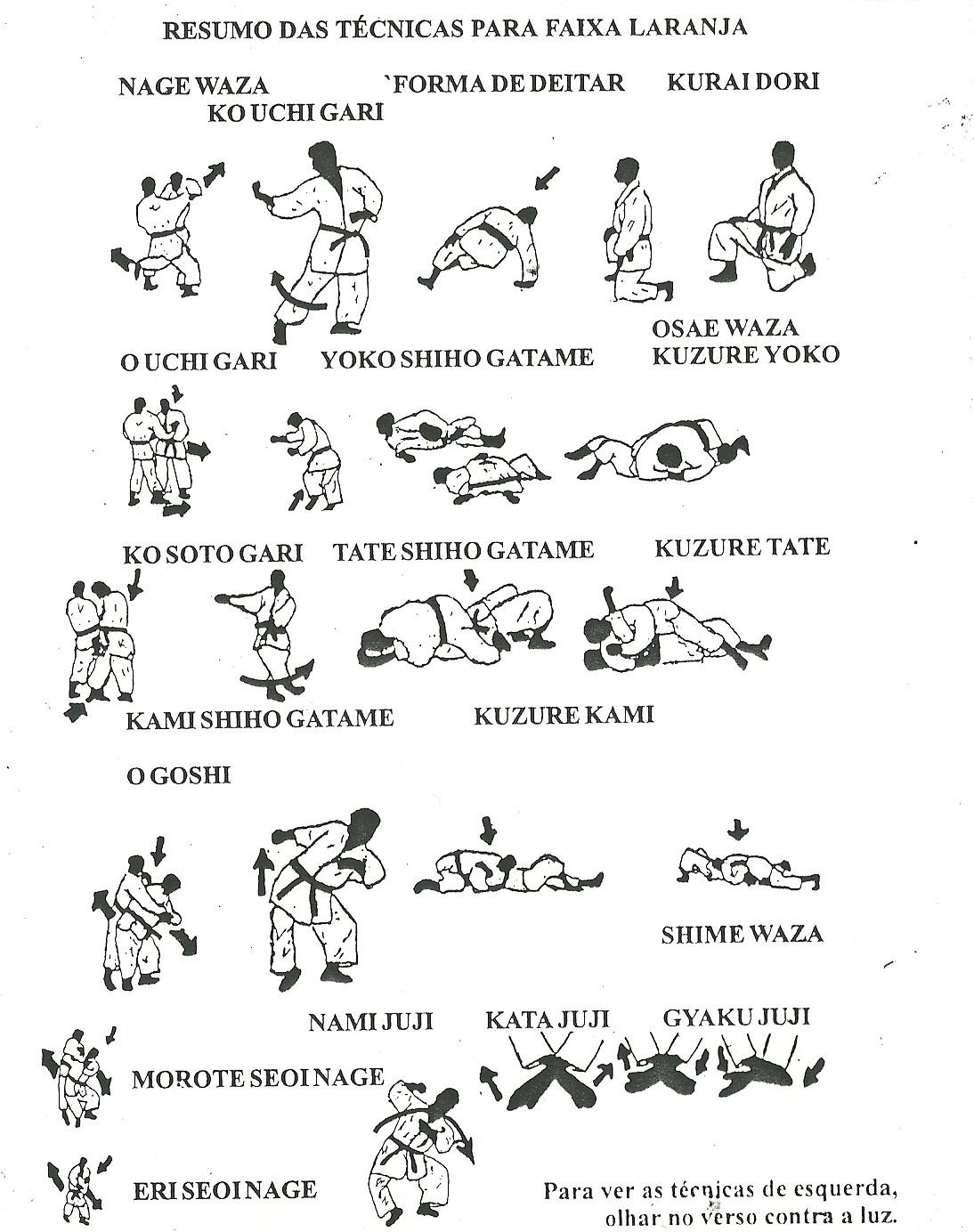 Exame de faixa verde judo