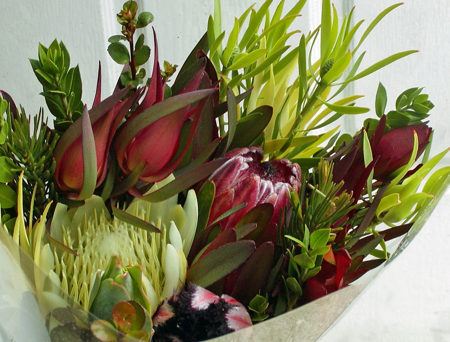 A Passion for Flowers: December 2013