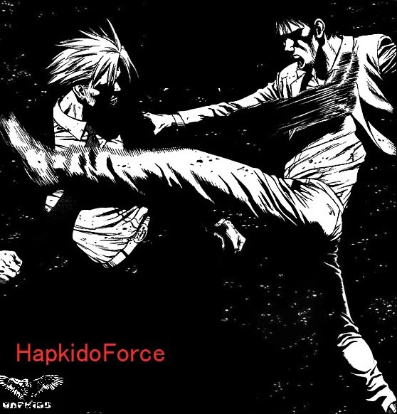 Hapkido Force