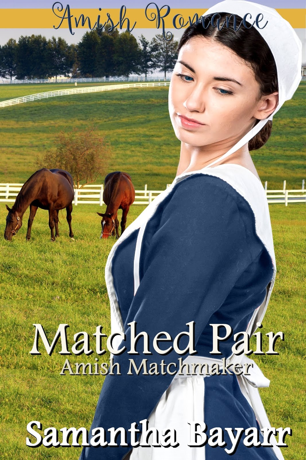 A Matched Pair: The Amish Matchmaker