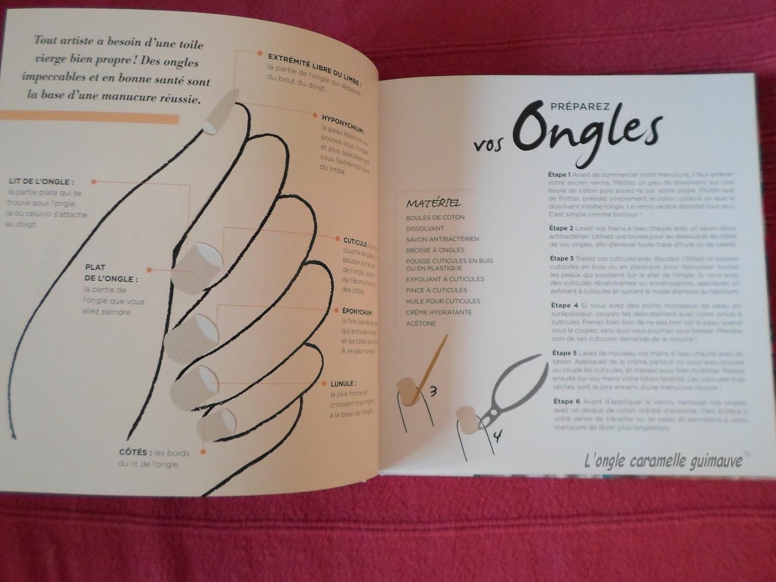 livre top manucure 50 idée pour des ongles tendance