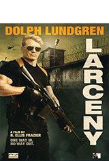 Larceny (2017) WEB-DL 1080p  Latino AC3 2.0 / Español Castellano AC3 5.1