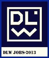 DLW job 2013