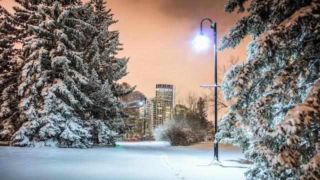 Một góc của thành phố khi mùa đông về