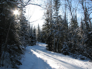 Winter road through the trees near Burntside lake, http://huismanconcepts.com/