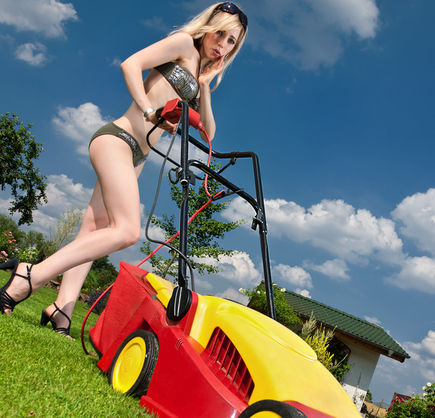 Lawn Care in Cape Coral and Fort Myers - ProMo Lawn Care ...
