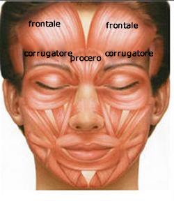 Applicazione di pacco di faccia gelatinosa