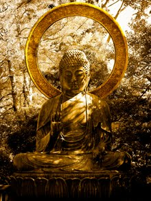 A Vida De Buddha