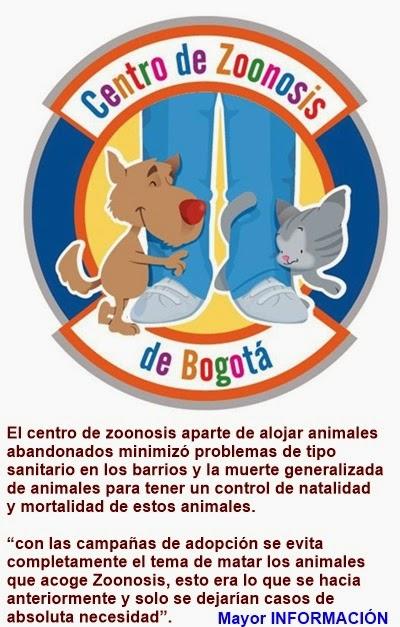 BOGOTÁ: Zoonosis pasó de ser un matadero a ser un centro de bienestar animal