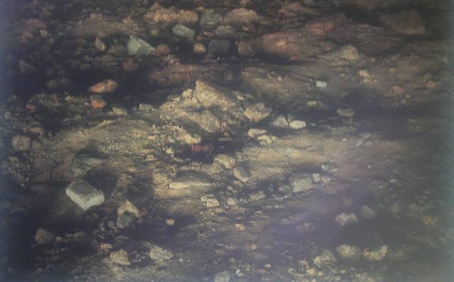 Gezeitentümpel, Tidal pools, Philipp Aldrup, Objectifs Gallery, Singapore