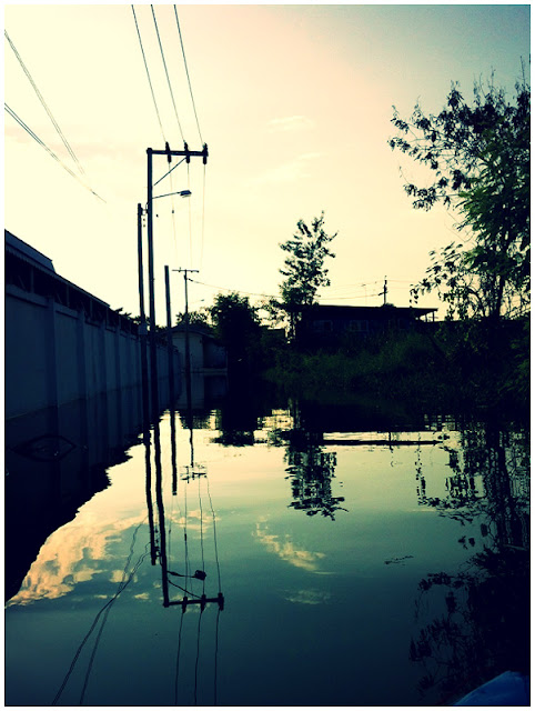 Photograph Water Flood