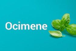 Ocimene The Anti-Inflammatory Antiviral Terpene