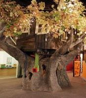 Tree House - The Quirky Confessions