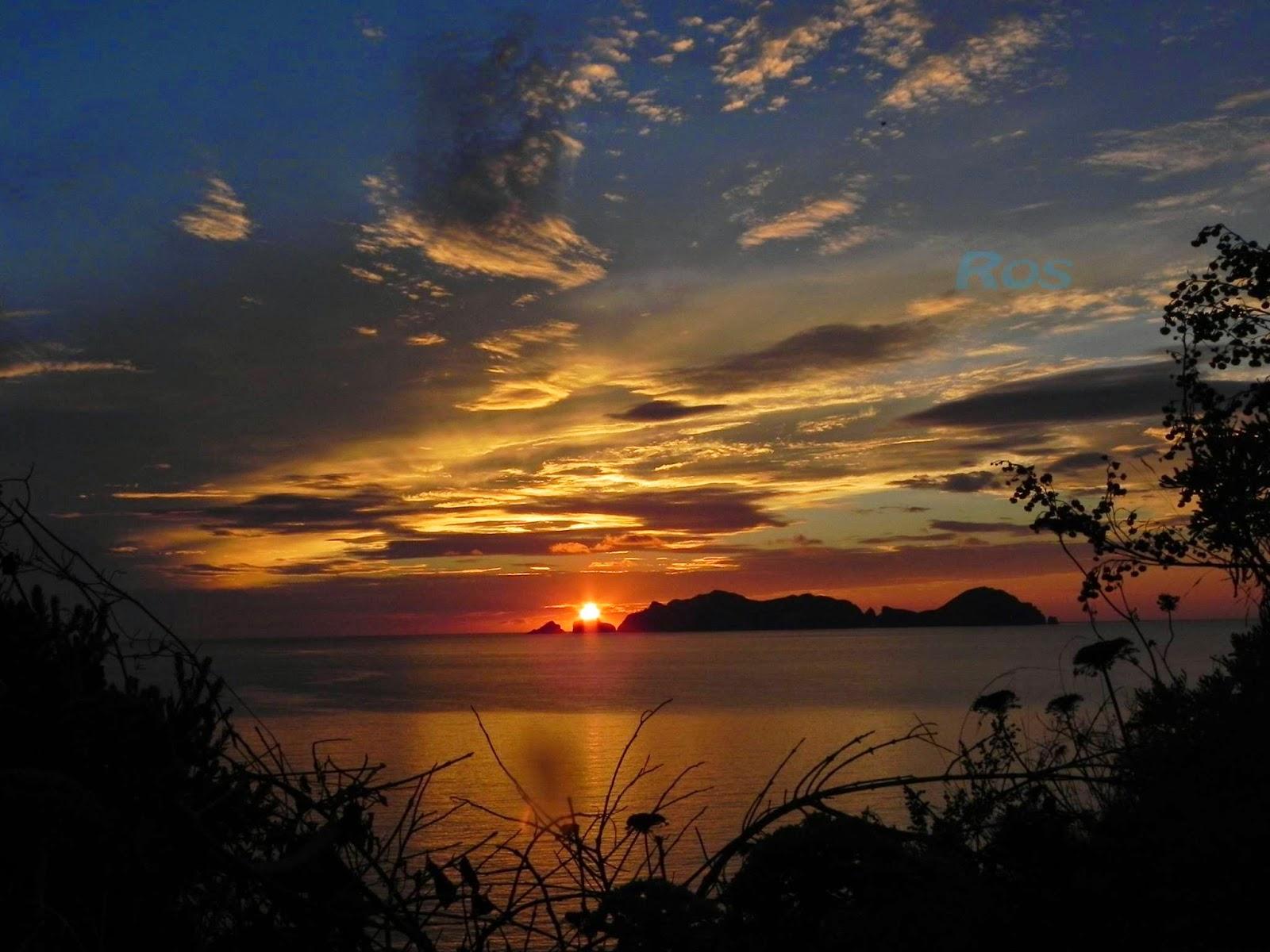 Frammenti di ponza tramonto su palmarola - Colorazione pagine palma domenica ...