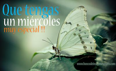 mariposa con mensaje especial para el día miércoles