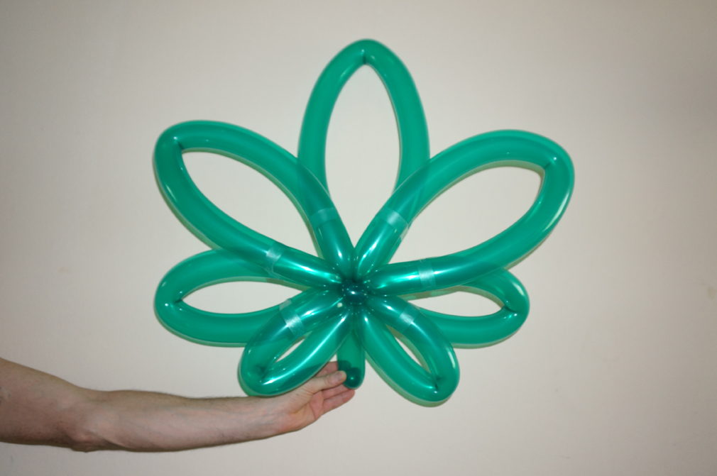Balloon Animals Twisting Instructions Marijuana Balloon Leaf