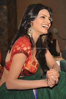 Sherlyn, chopra, hot, saree, navel, pictures