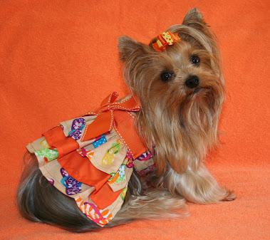 Binky - Our Class Mascot