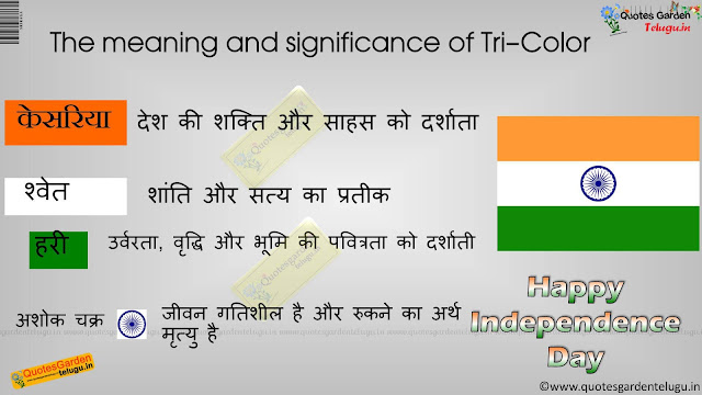 History facts meaning About indian national flag significance in hindi 844