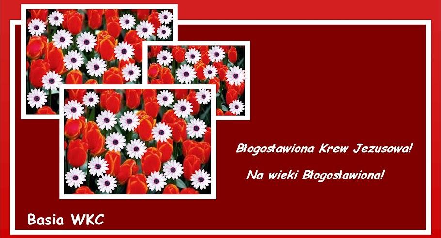 Basia WKC