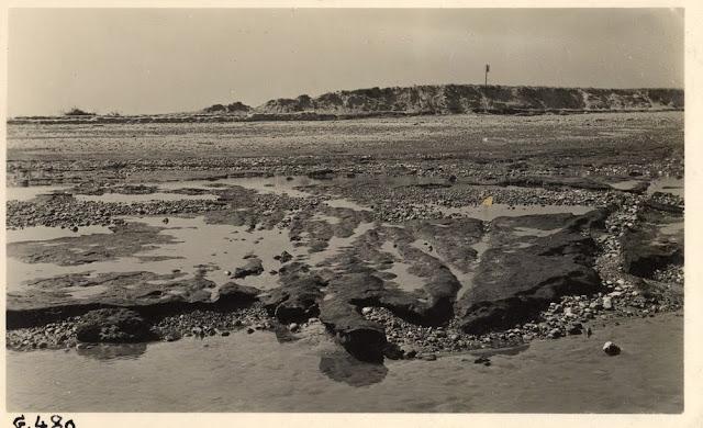 Horsey inundation, Norfolk. 1938.