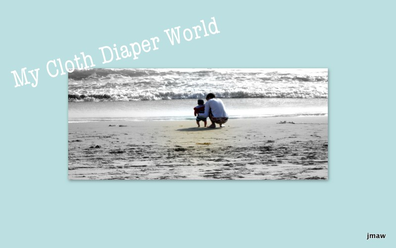 My cloth diaper world