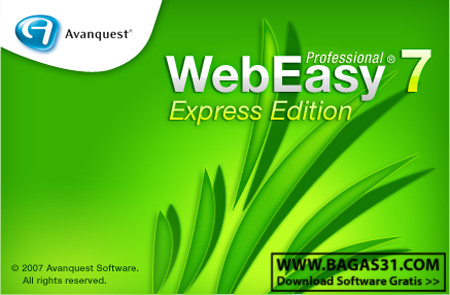 Web Easy 7 Professional + Serial 2