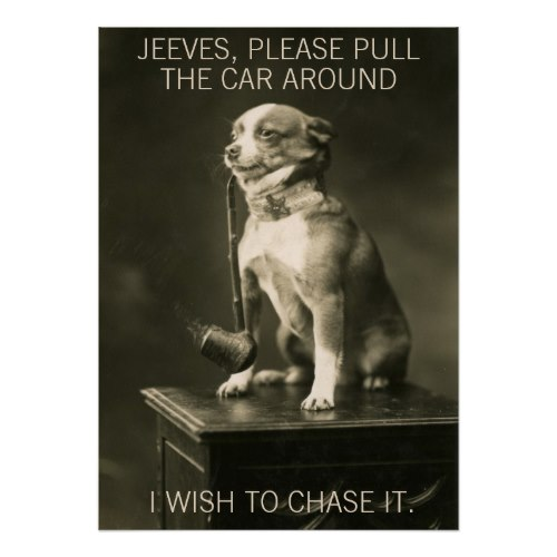 Chihuahua Smoking a Pipe | Funny Photo Poster