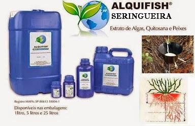 ALQUIFISH SERINGUEIRA
