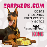 ¡CÓMPRALE ALGO A TU PERRO O GATO!
