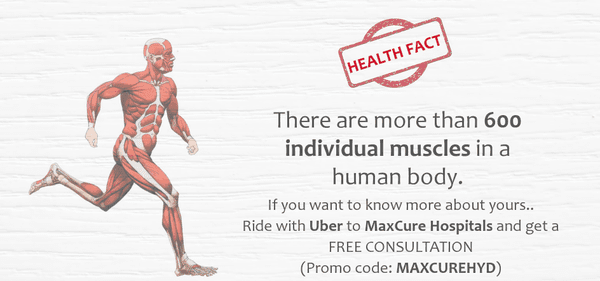 health fact for muscles