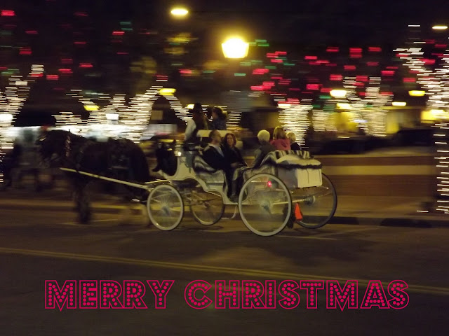 horse and carriage holidays
