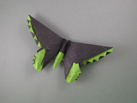 How To Origami Butterfly. origami Butterfly Birdwing 3D