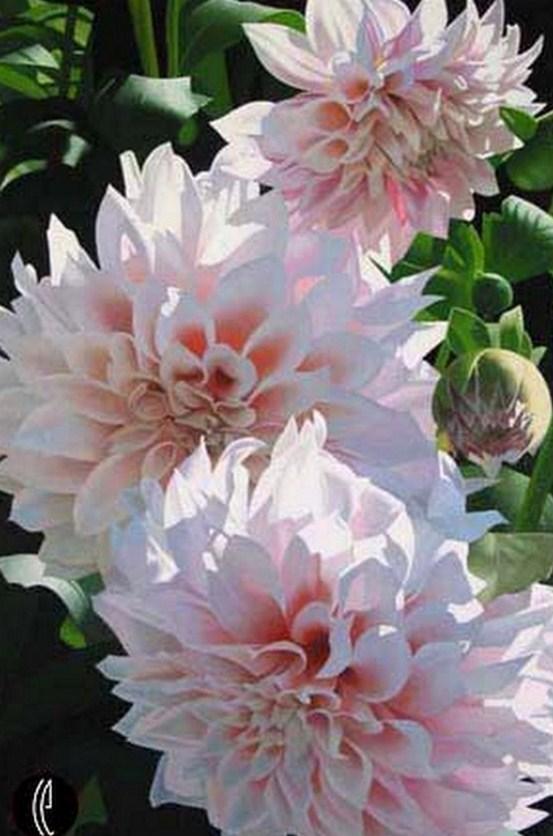 Imagenes De Bodegones Con Flores - cuadros oleo bodegones flores Mil anuncios