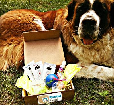 Postal Puppy