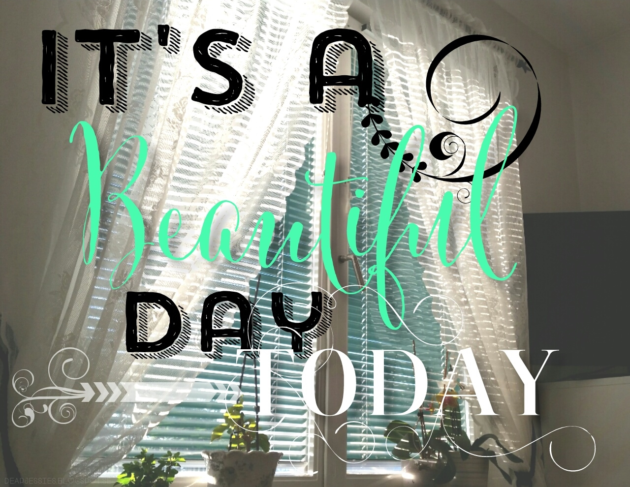 morning light, rhonna designs app, happiness